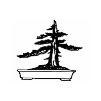 KW Bonsai Society